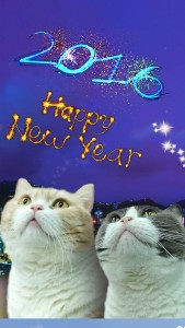 New Year 02