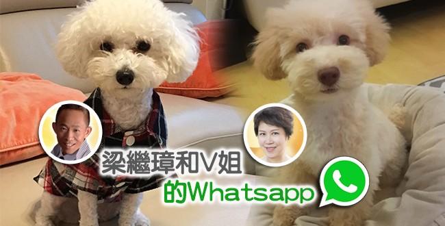 【電台小記者】 梁繼璋和V姐的Whatsapp …