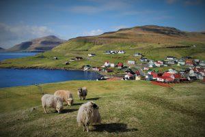 Faroe Island3