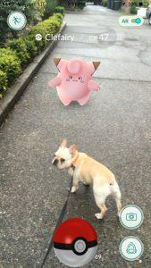 PokemonGo6