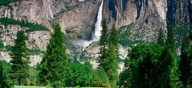 國家公園管理局100歲生日 本周末全美國家公園免門票