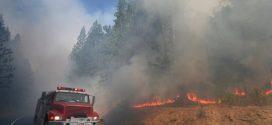 加州優勝美地國家公園野火肆虐