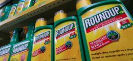 舊金山的陪審員剛剛裁定,世界上最受歡迎的除草劑Roundup給了一名前學校的地勤人員癌症。